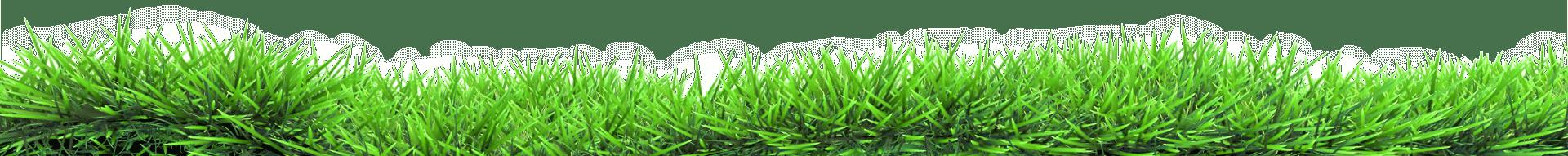 Gras Overlay Startseite
